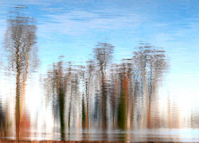 Réflexions au lac