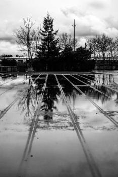 Reflet dans un miroir d'eau