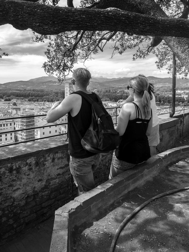 Du haut de la tour Guinigi,
