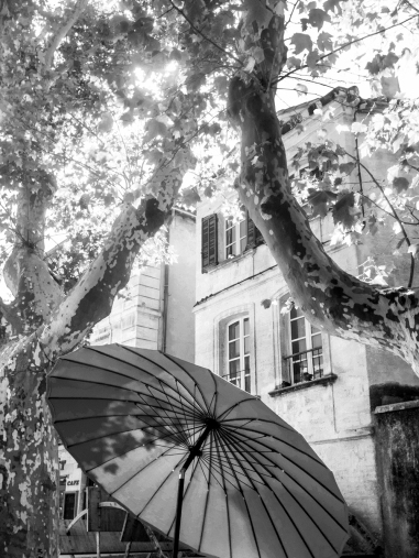 .. des formes subtiles viennent chatouiller l'ombrelle