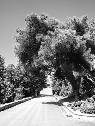 Une route sans fin ... un ailleurs