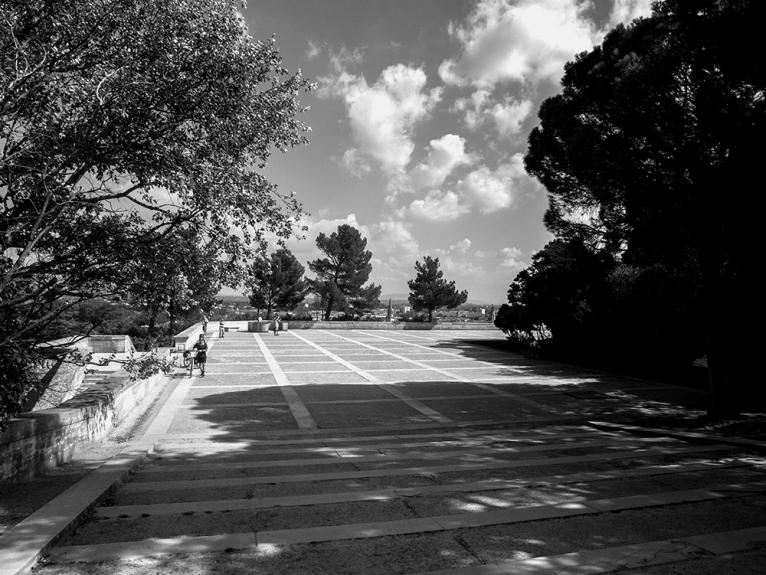 Se balader dans le jardin du rocher des Doms et se poser à l'ombre des arbres centenaires ...