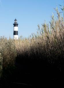 Sur le sentier qui longe la côte, deux points de vue : le joli phare de Chassiron ...