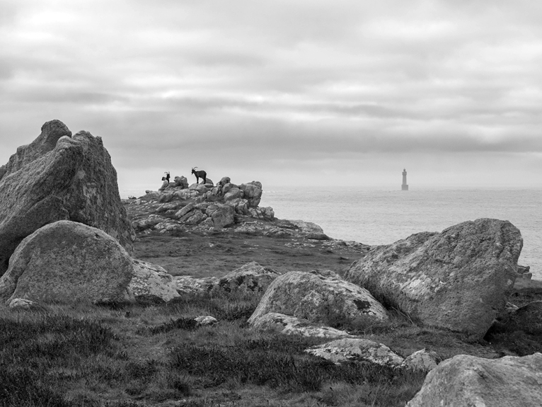 ouessant116