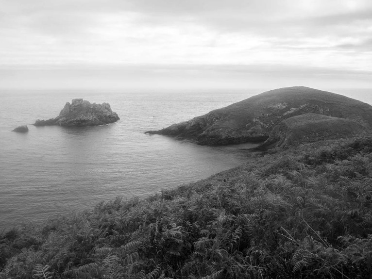 ouessant117